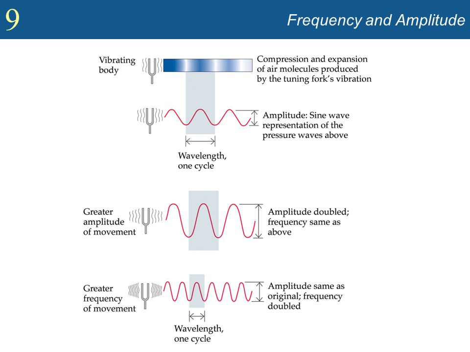 9 Frequency and Amplitude