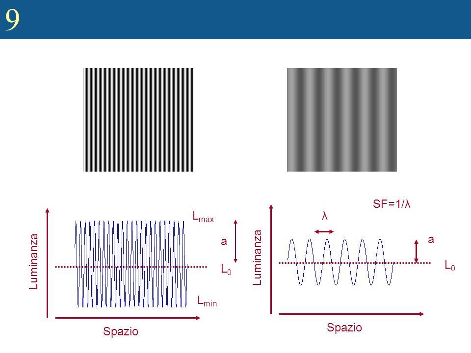 9 Basic Structure of the Mammalian Auditory System (contd) Codificare lampiezza e la frequenza dei suoni nella coclea –Codifica tonotopica: Parti diverse della coclea sono sensibili a frequenze diverse cioè ogni particolare zona della coclea risponde in maniera più robusta ad una determinata frequenza e meno ad altre