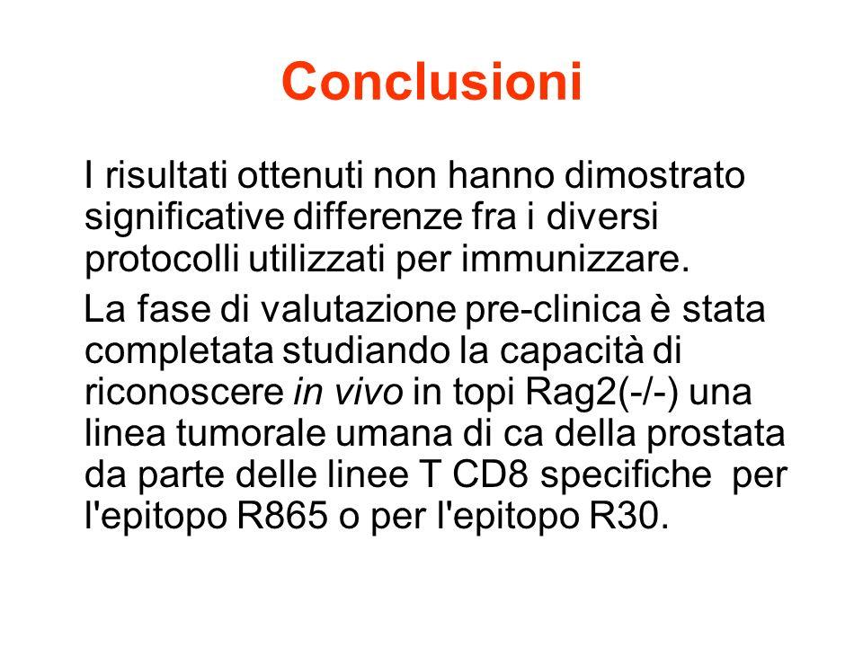 Conclusioni I risultati ottenuti non hanno dimostrato significative differenze fra i diversi protocolli utilizzati per immunizzare. La fase di valutaz