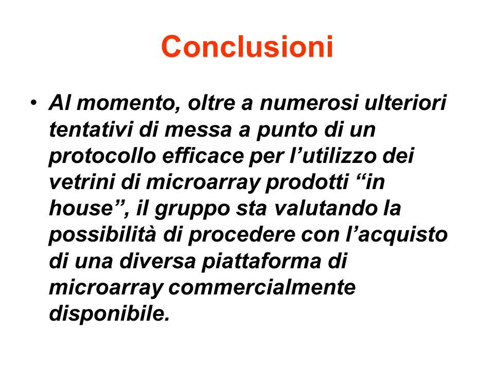Conclusioni Al momento, oltre a numerosi ulteriori tentativi di messa a punto di un protocollo efficace per lutilizzo dei vetrini di microarray prodot