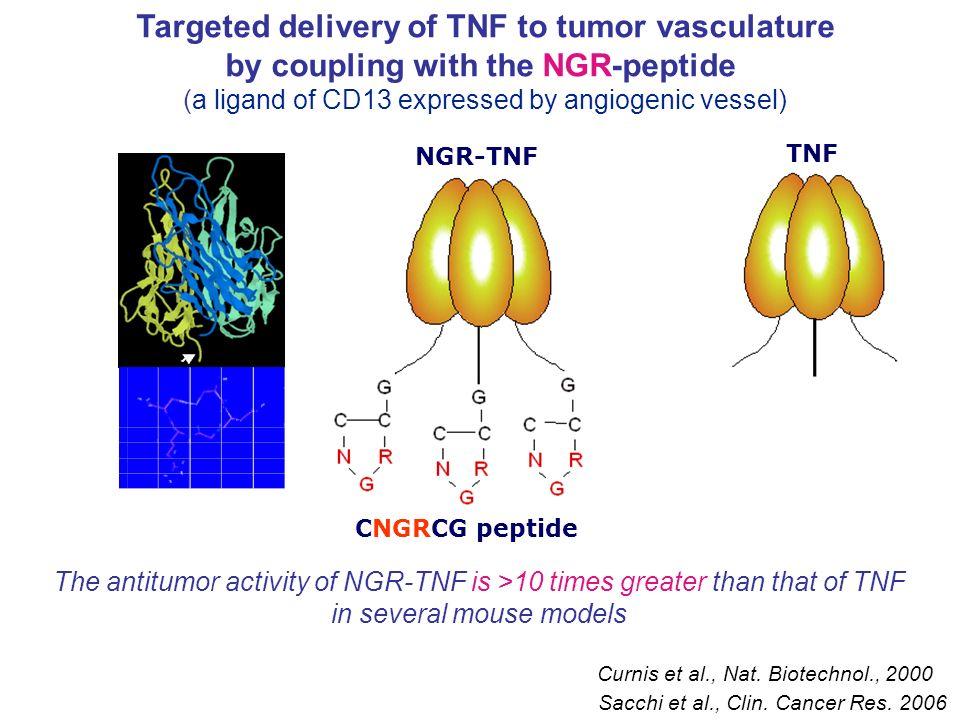 Valutazione dei livelli serici di PTX3 in diverse forme tumorali -Trovata in liposarcoma, condrosarcoma, glioma, carcinoma ovarico, polmonare e mammario, AML, ALL (Willeke et al.