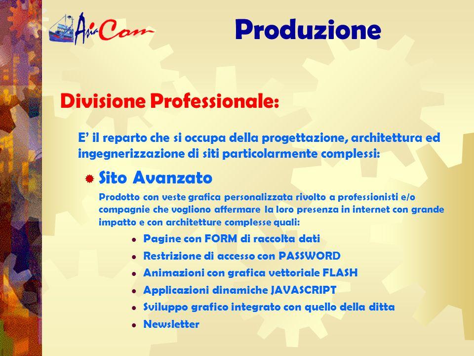 Divisione Professionale: Produzione Il progetto e lo sviluppo di un sito web di successo non sono operazioni complesse se affidate a esperti professionisti del settore.