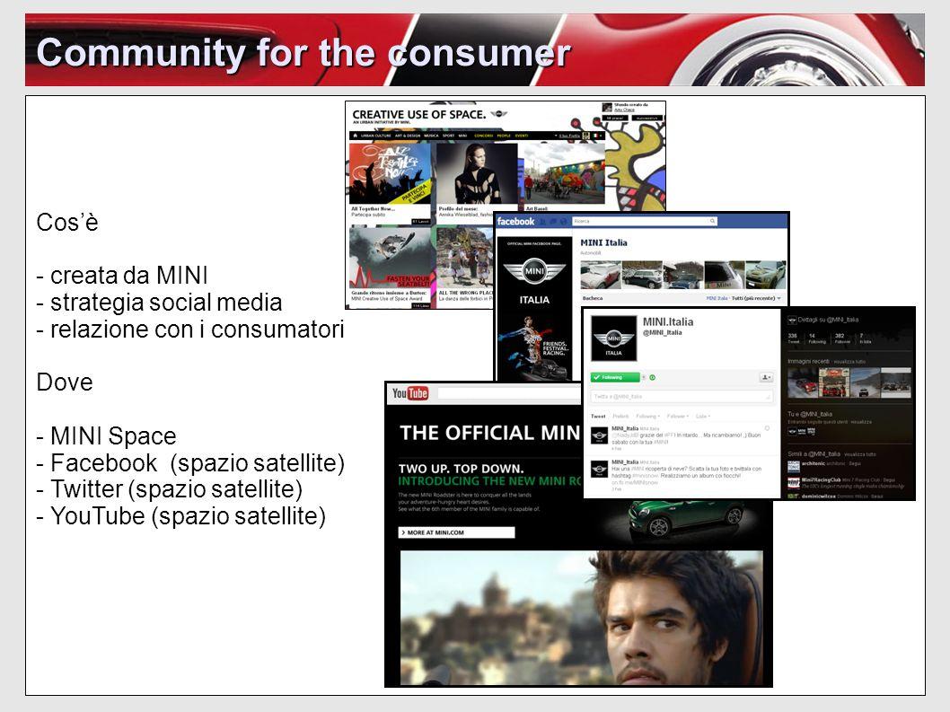 Community for the consumer Cosè - creata da MINI - strategia social media - relazione con i consumatori Dove - MINI Space - Facebook (spazio satellite