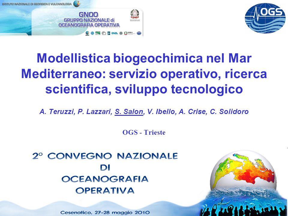 CNOO2 Cesenatico 27-28 Maggio 2010 Modellistica biogeochimica nel Mar Mediterraneo: servizio operativo, ricerca scientifica, sviluppo tecnologico A.