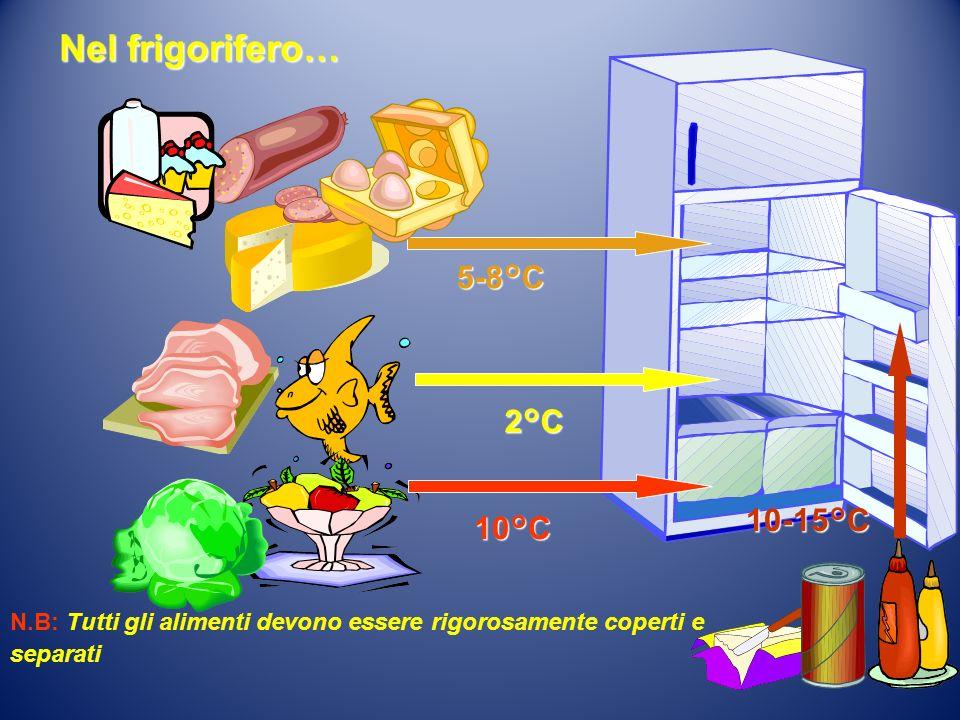 2°C 5-8°C 10°C 10-15°C Nel frigorifero… N.B: Tutti gli alimenti devono essere rigorosamente coperti e separati