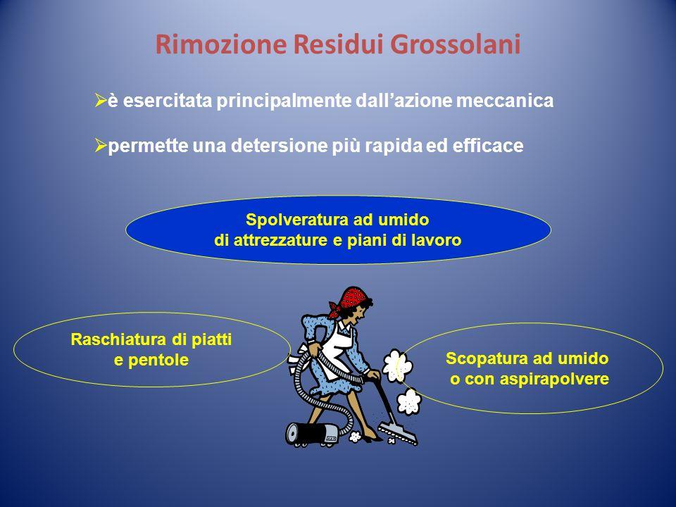 Rimozione Residui Grossolani è esercitata principalmente dallazione meccanica permette una detersione più rapida ed efficace Spolveratura ad umido di