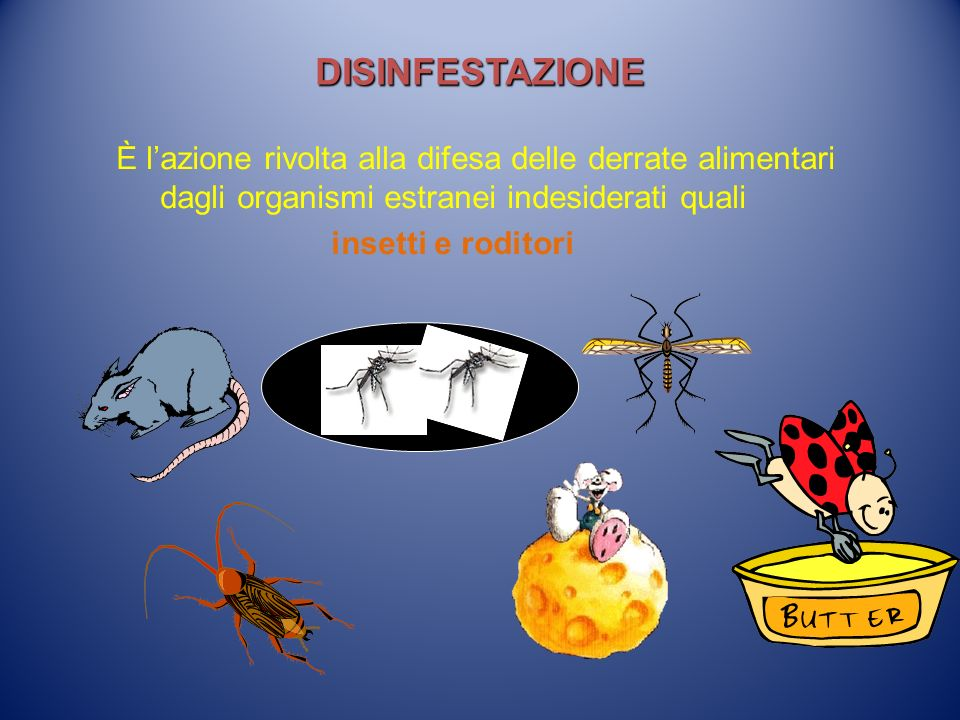 DISINFESTAZIONE È lazione rivolta alla difesa delle derrate alimentari dagli organismi estranei indesiderati quali insetti e roditori