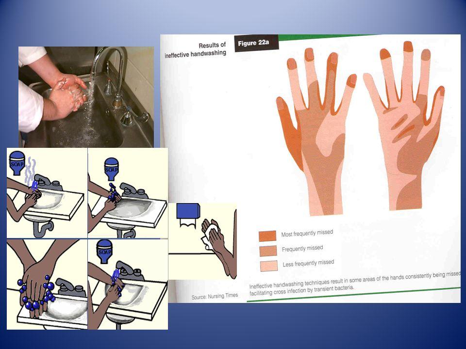 Inoltre non pulirsi le mani sugli abiti da lavoro, ma lavarle ogni volta che sia necessario non pulirsi le mani sugli abiti da lavoro, ma lavarle ogni volta che sia necessario evitare di toccarsi il naso, i capelli, i baffi e le altre parti del corpo evitare di toccarsi il naso, i capelli, i baffi e le altre parti del corpo non toccare con le mani i cibi non confezionati, ma usare utensili appropriati o guanti monouso non toccare con le mani i cibi non confezionati, ma usare utensili appropriati o guanti monouso