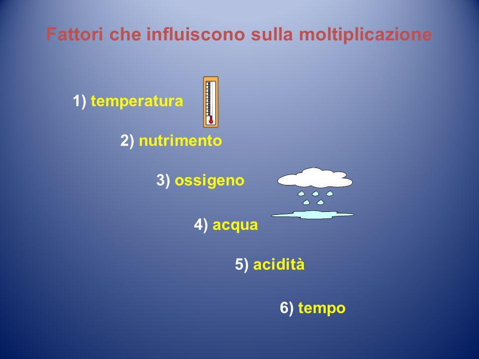 4) acqua 1) temperatura 3) ossigeno 2) nutrimento Fattori che influiscono sulla moltiplicazione 5) acidità 6) tempo