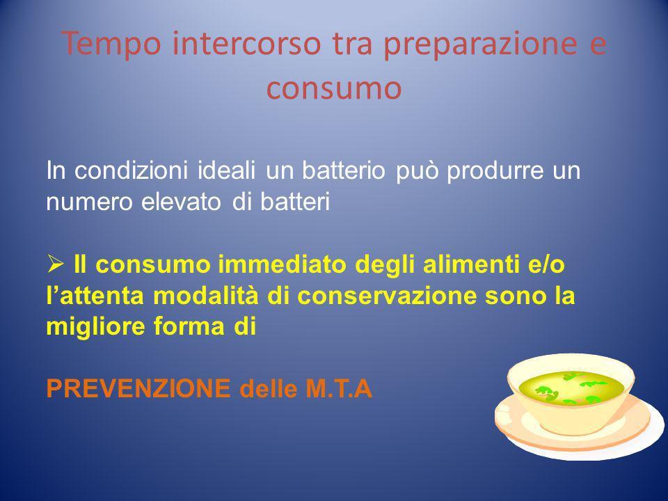 Tempo intercorso tra preparazione e consumo In condizioni ideali un batterio può produrre un numero elevato di batteri Il consumo immediato degli alim