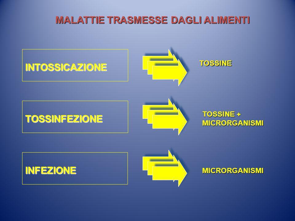 MALATTIE TRASMESSE DAGLI ALIMENTI INTOSSICAZIONE TOSSINFEZIONE INFEZIONE TOSSINE TOSSINE + MICRORGANISMI MICRORGANISMI