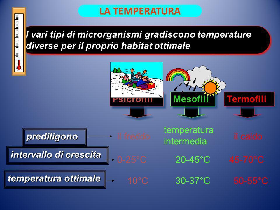 10°C 30-37°C 50-55°C I vari tipi di microrganismi gradiscono temperature diverse per il proprio habitat ottimale prediligono intervallo di crescita te