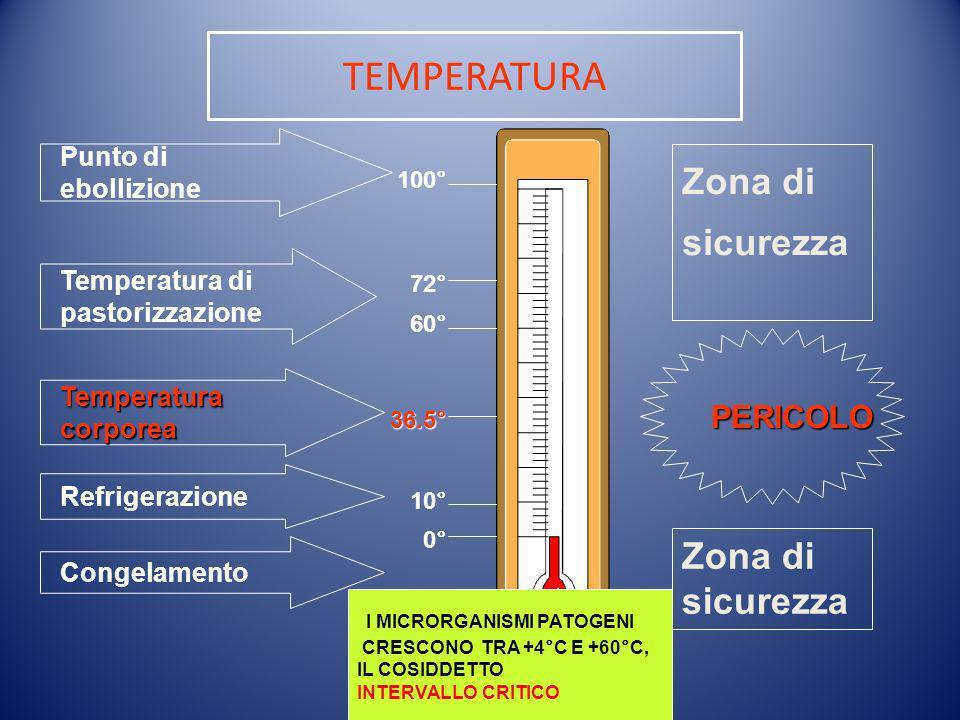 TEMPERATURA Punto di ebollizione Temperatura di pastorizzazione Temperatura corporea Refrigerazione Congelamento 100° 72° 60° 36.5° 10° 0° Zona di sic