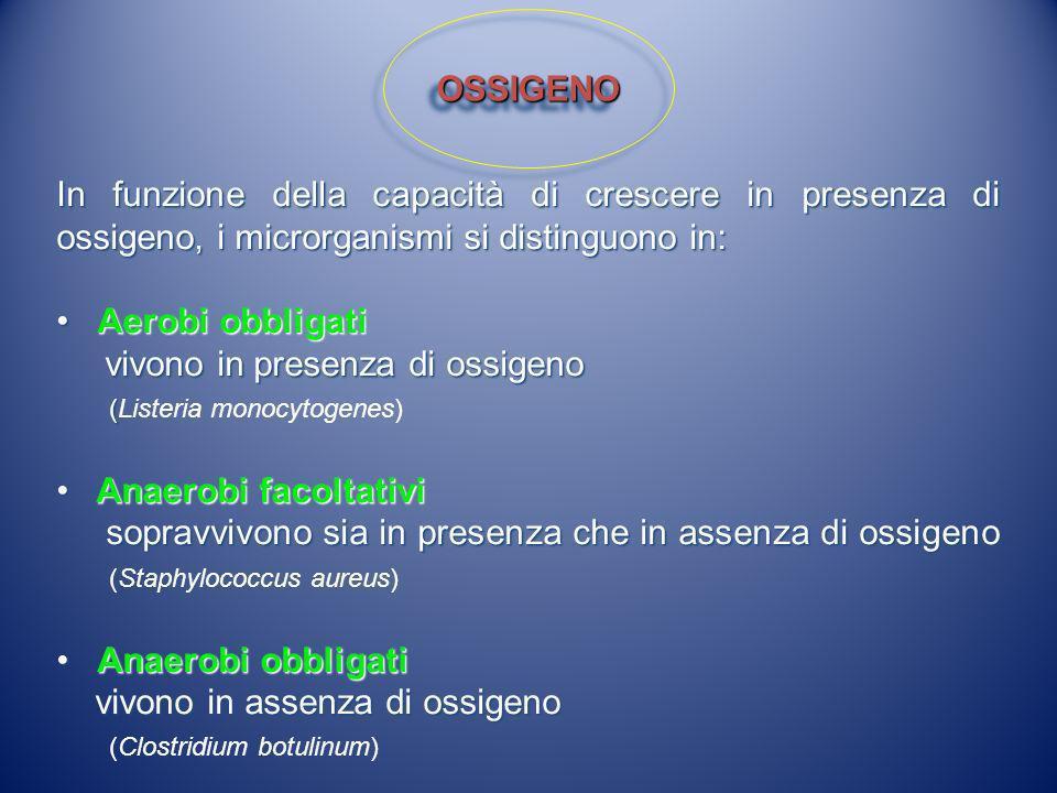 art.2 comma a del D.Lgs.