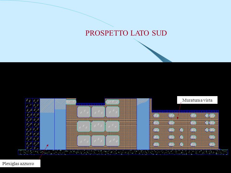 PROSPETTO LATO SUD Plexiglas azzurro Muratura a vista