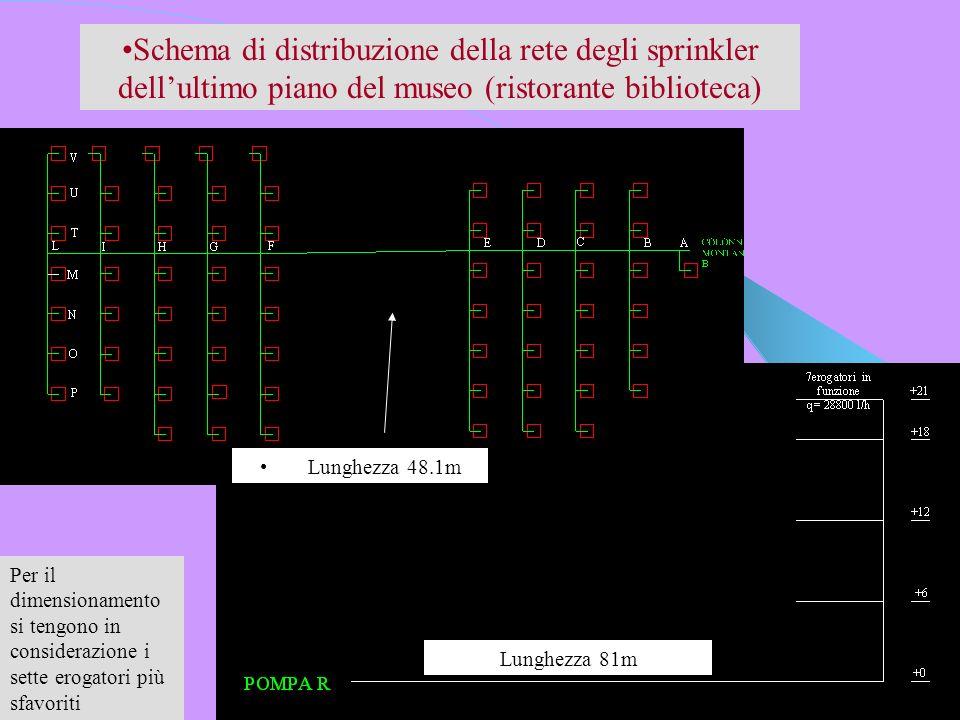 Schema di distribuzione della rete degli sprinkler dellultimo piano del museo (ristorante biblioteca) Lunghezza 81m Lunghezza 48.1m Per il dimensionam