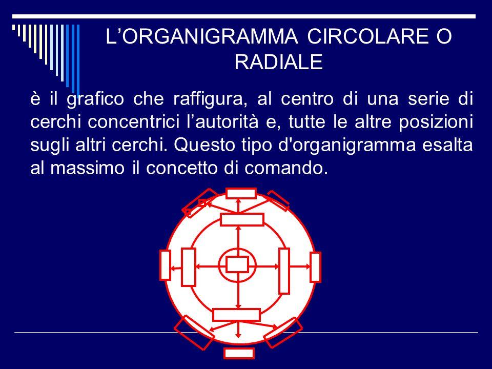 LORGANIGRAMMA CIRCOLARE O RADIALE è il grafico che raffigura, al centro di una serie di cerchi concentrici lautorità e, tutte le altre posizioni sugli
