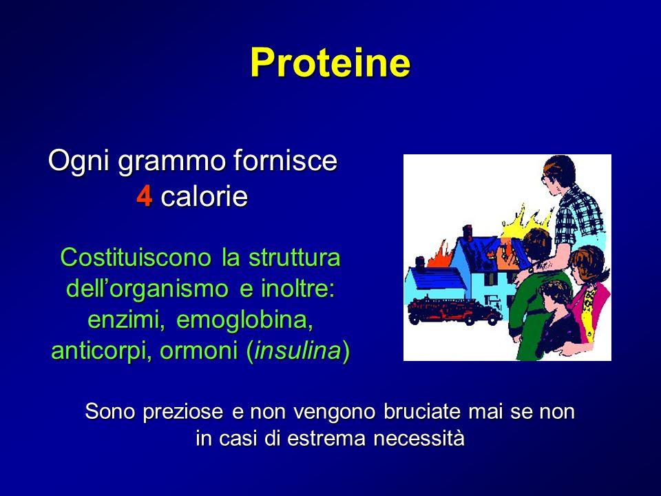 Proteine Ogni grammo fornisce 4 calorie Costituiscono la struttura dellorganismo e inoltre: enzimi, emoglobina, anticorpi,ormoni (insulina) Costituisc