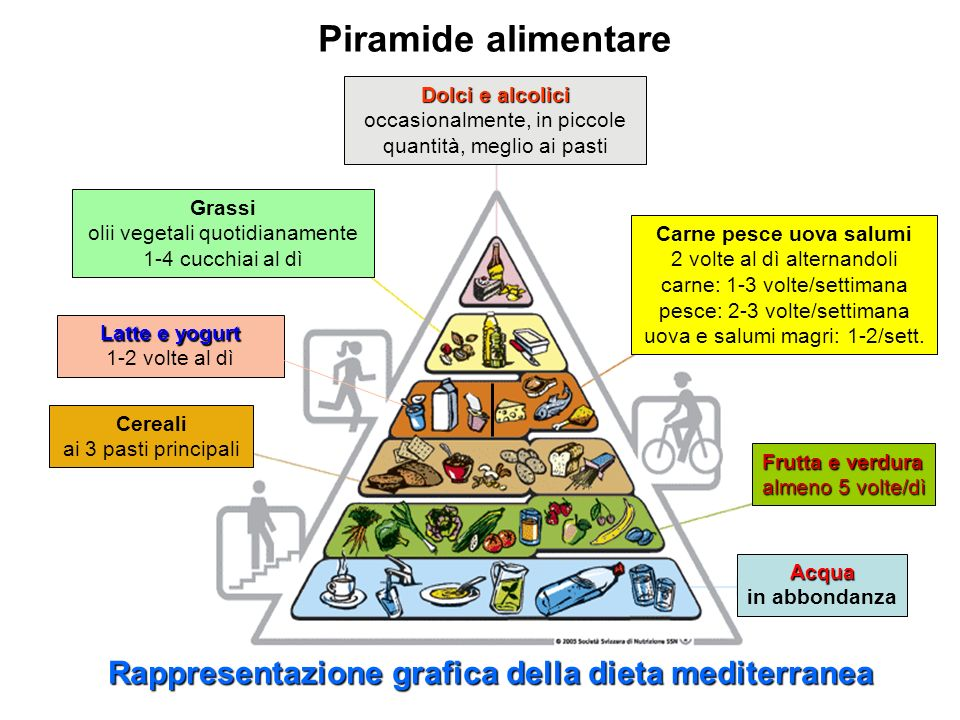 Rappresentazione grafica della dieta mediterranea Acqua Acqua in abbondanza Frutta e verdura almeno 5 volte/dì Cereali ai 3 pasti principali Carne pes