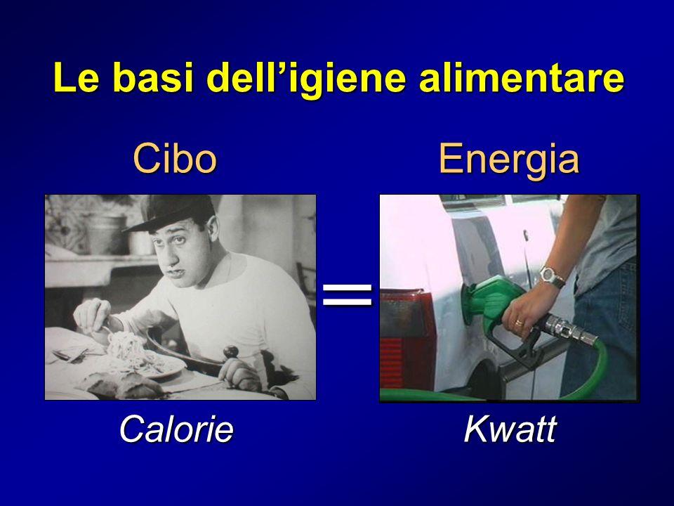Cibo = Energia Le basi delligiene alimentare CalorieKwatt
