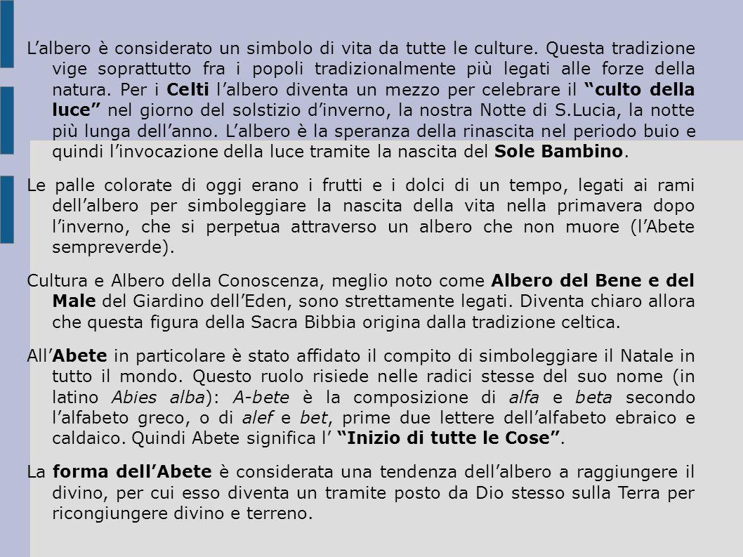 Lalbero è considerato un simbolo di vita da tutte le culture.