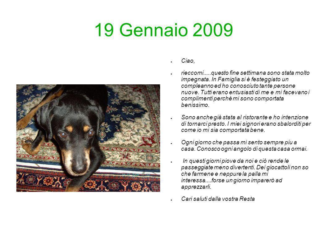 19 Gennaio 2009 Ciao, rieccomi.....questo fine settimana sono stata molto impegnata. In Famiglia si è festeggiato un compleanno ed ho conosciuto tante