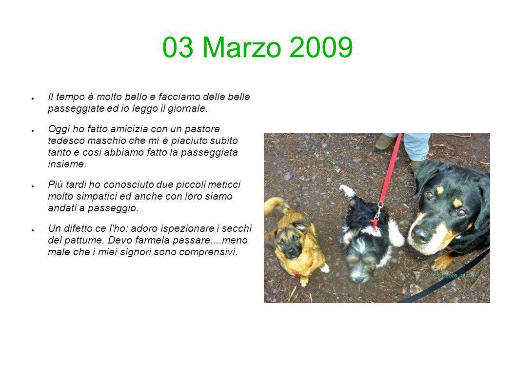 03 Marzo 2009 Il tempo è molto bello e facciamo delle belle passeggiate ed io leggo il giornale. Oggi ho fatto amicizia con un pastore tedesco maschio
