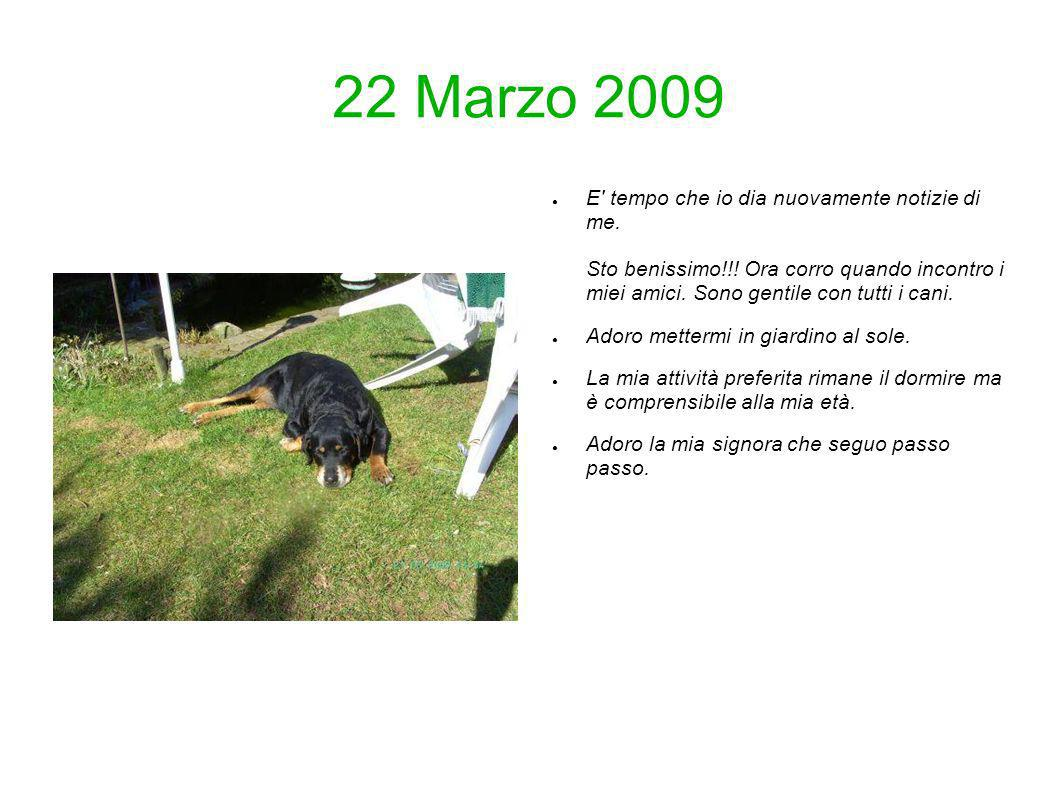 22 Marzo 2009 E' tempo che io dia nuovamente notizie di me. Sto benissimo!!! Ora corro quando incontro i miei amici. Sono gentile con tutti i cani. Ad