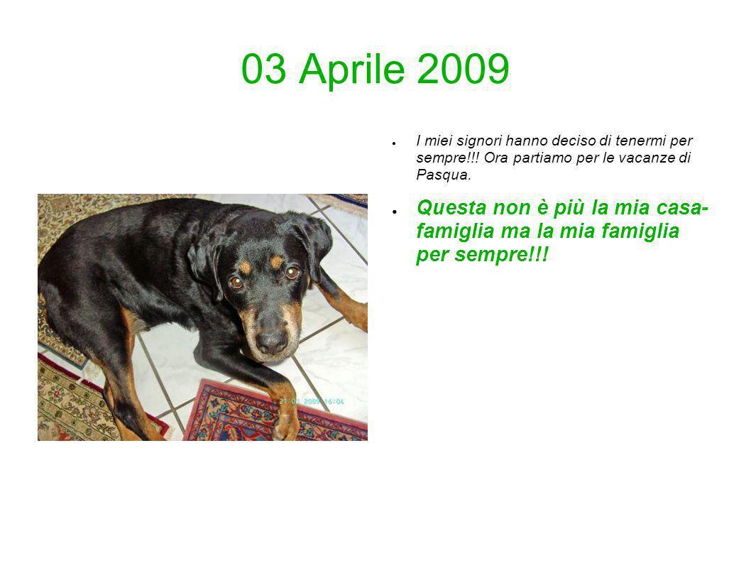 03 Aprile 2009 I miei signori hanno deciso di tenermi per sempre!!! Ora partiamo per le vacanze di Pasqua. Questa non è più la mia casa- famiglia ma l