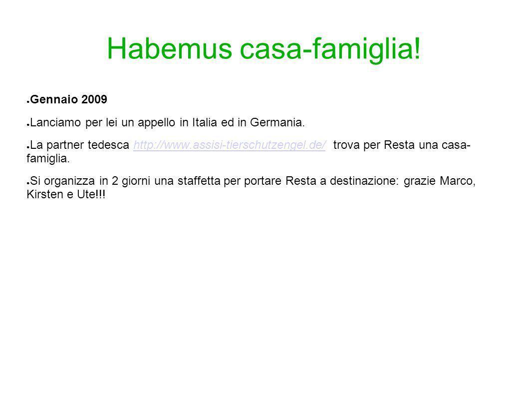Habemus casa-famiglia! Gennaio 2009 Lanciamo per lei un appello in Italia ed in Germania. La partner tedesca http://www.assisi-tierschutzengel.de/ tro