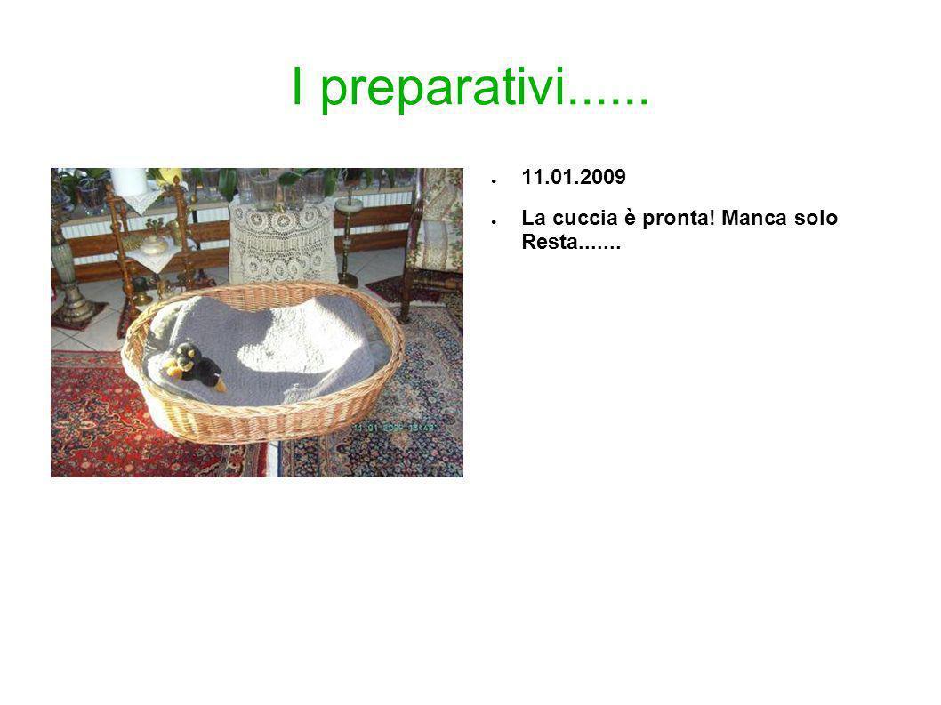 I preparativi...... 11.01.2009 La cuccia è pronta! Manca solo Resta.......