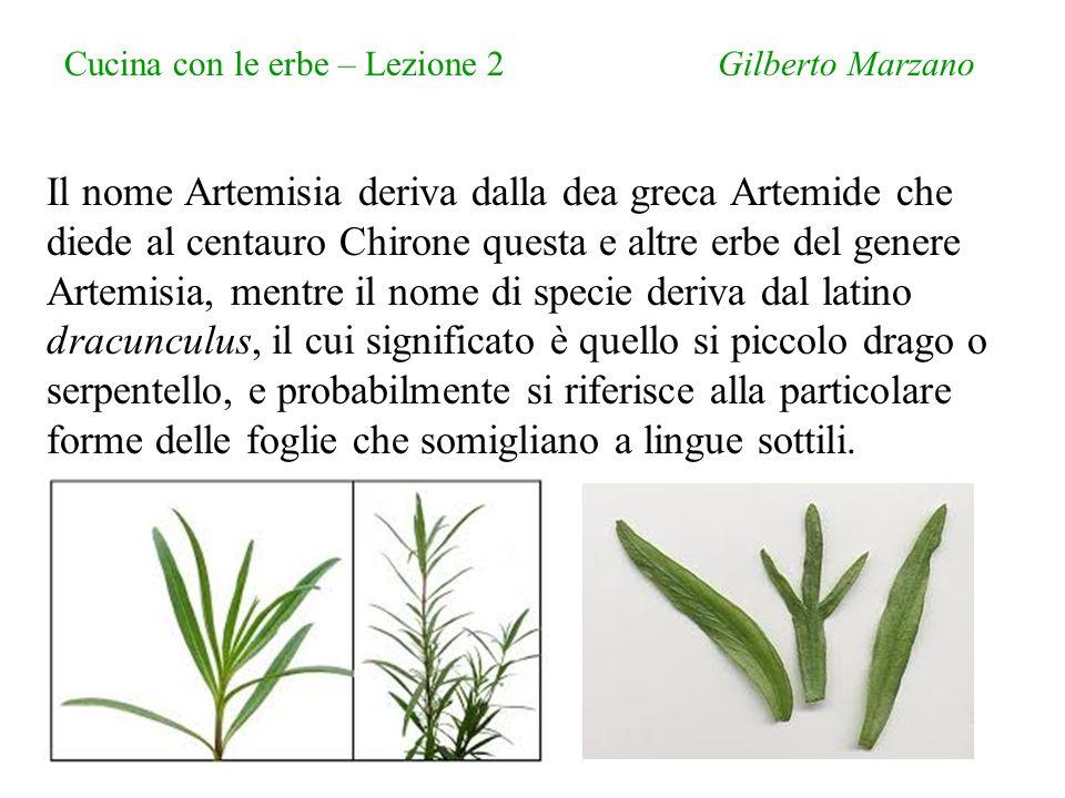 Cucina con le erbe – Lezione 2 Gilberto Marzano Chirone (gr.