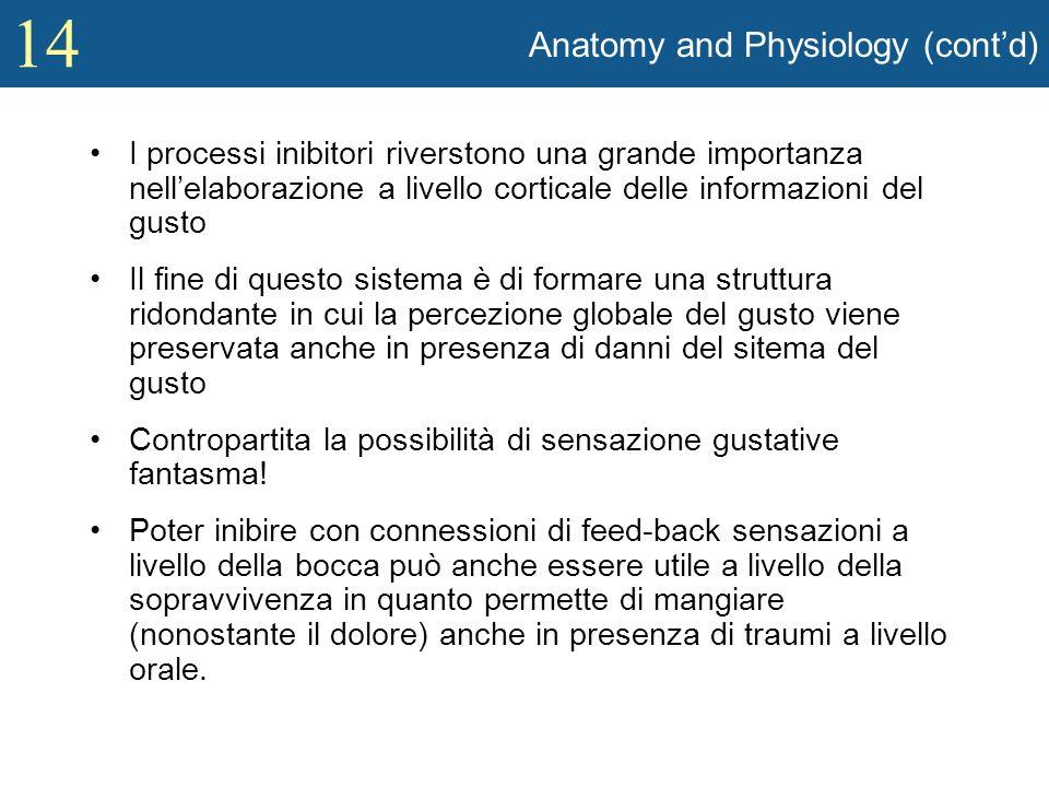 14 Anatomy and Physiology (contd) I processi inibitori riverstono una grande importanza nellelaborazione a livello corticale delle informazioni del gu