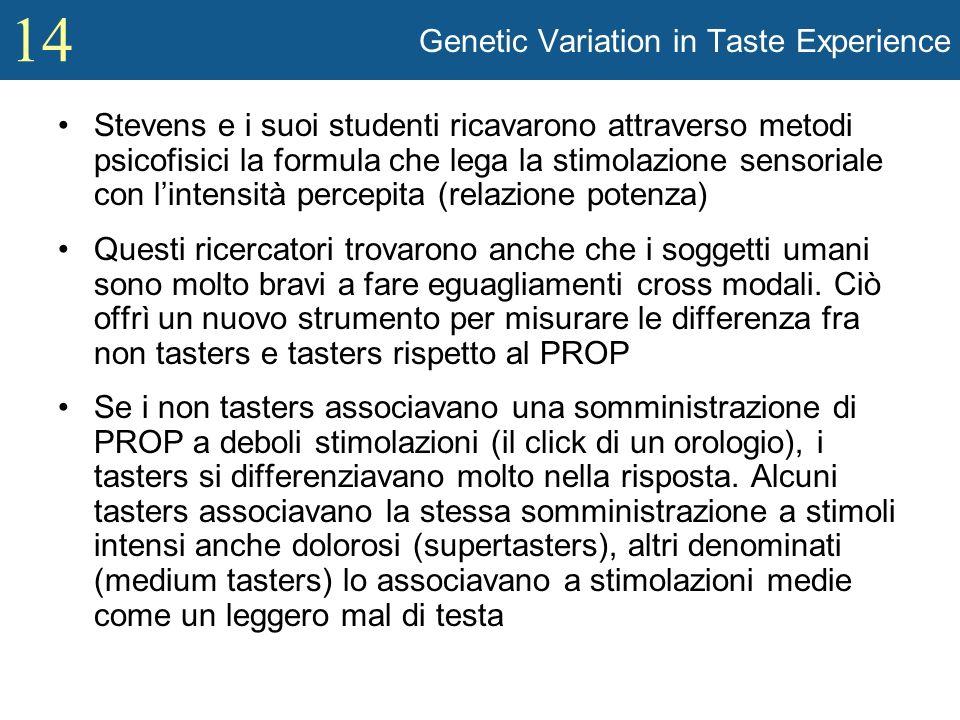 14 Genetic Variation in Taste Experience Stevens e i suoi studenti ricavarono attraverso metodi psicofisici la formula che lega la stimolazione sensor