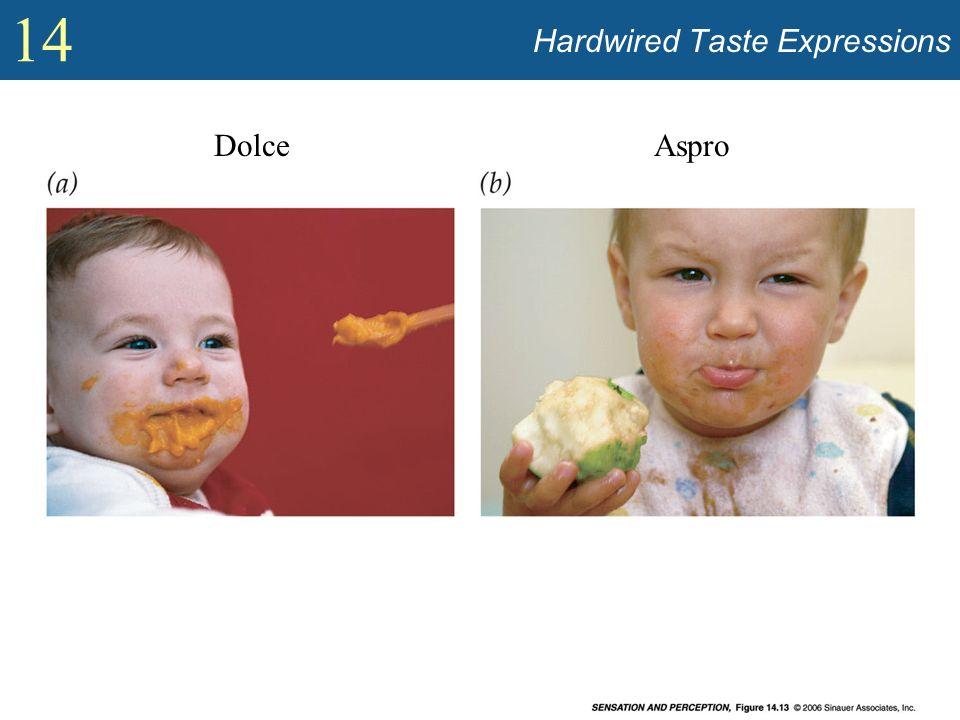 14 Hardwired Taste Expressions DolceAspro