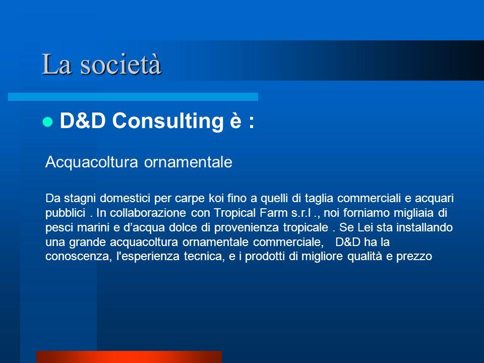 La società D&D Consulting è : R&D project Se Lei richiede scienziati ed una collaborazione per ricerca, D&D ha un ufficio che l aiuta con i programma della Comunità Europea per sostenere il Suo progetto.