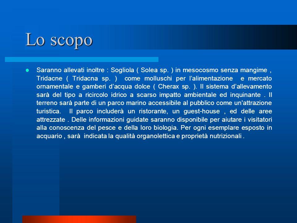 Keywords Acquacoltura, Parco Marino, turismo sostenibile, Bioprodotti