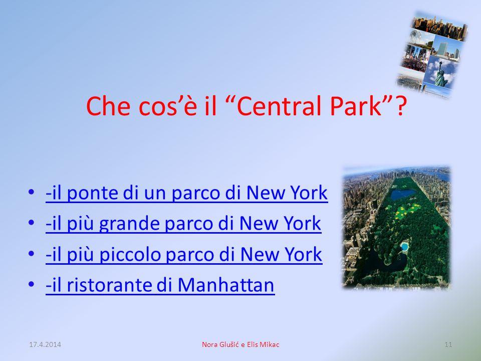 La capitale dello Stato di New York è: -New York City -Albany -Rochester -Buffalo 17.4.201410Nora Glušić e Elis Mikac