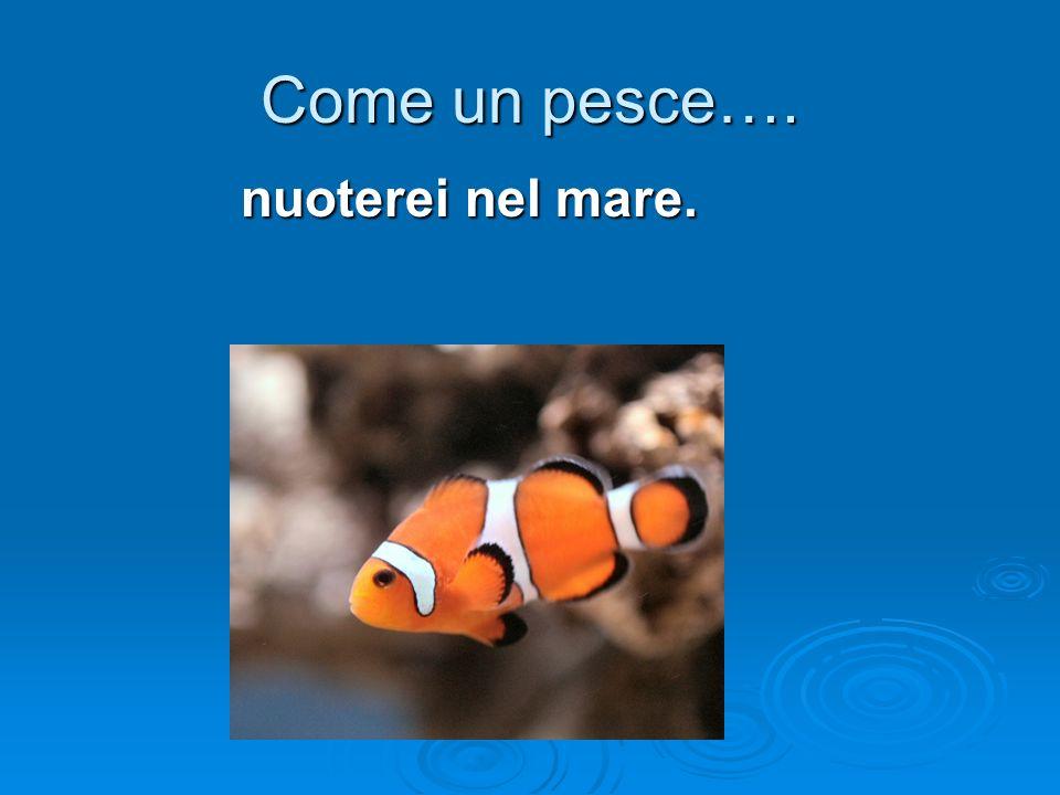 Come un pesce…. nuoterei nel mare.