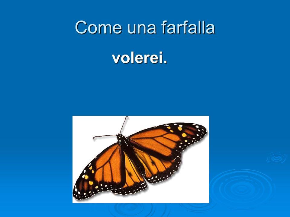 Come una farfalla volerei.
