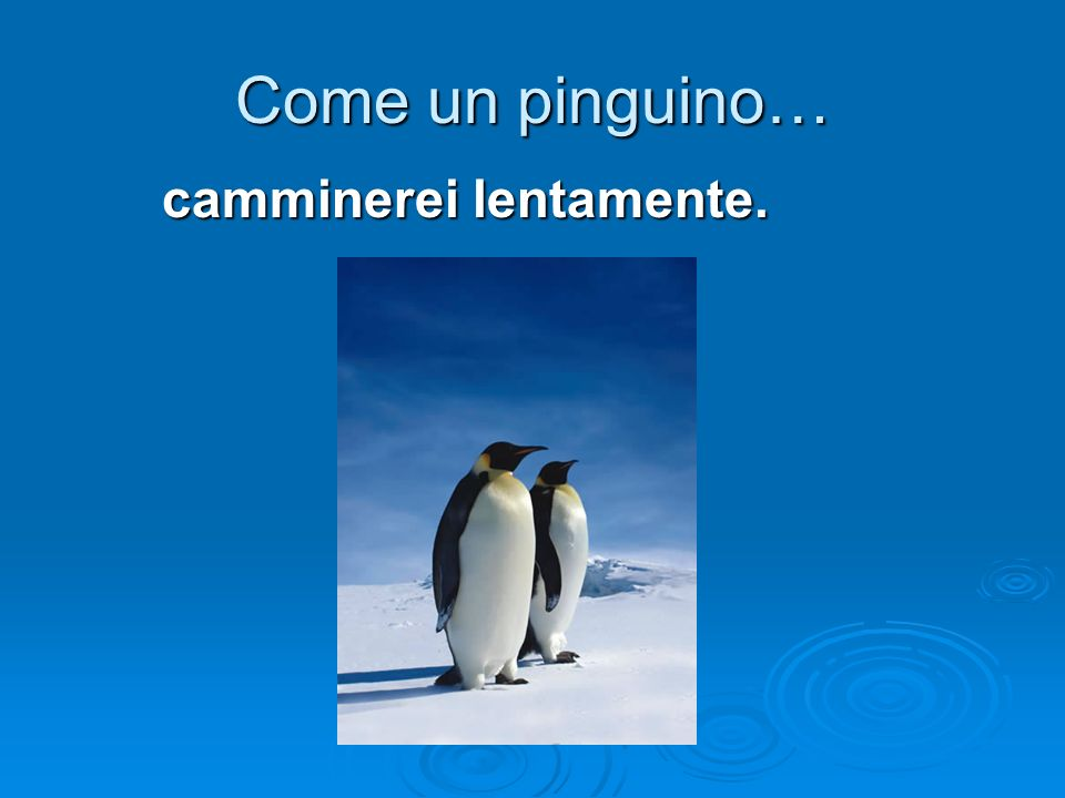Come un pinguino… camminerei lentamente.