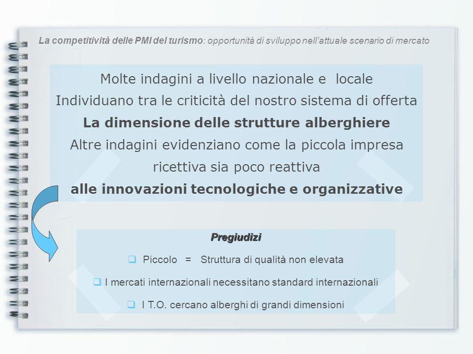 La competitività delle PMI del turismo: opportunità di sviluppo nellattuale scenario di mercato Molte indagini a livello nazionale e locale Individuan
