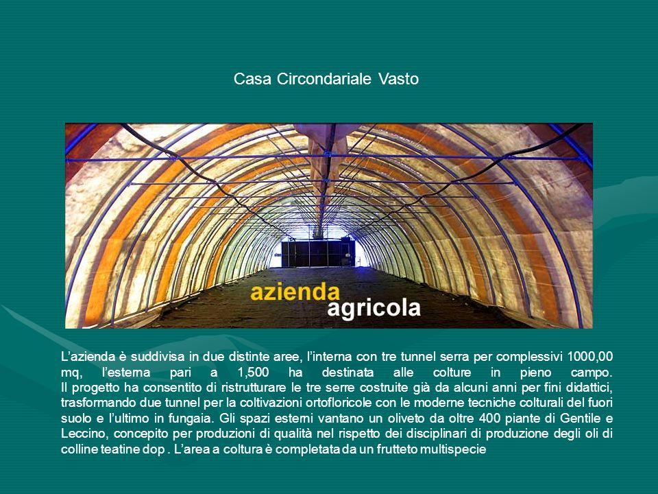 Lazienda è suddivisa in due distinte aree, linterna con tre tunnel serra per complessivi 1000,00 mq, lesterna pari a 1,500 ha destinata alle colture i