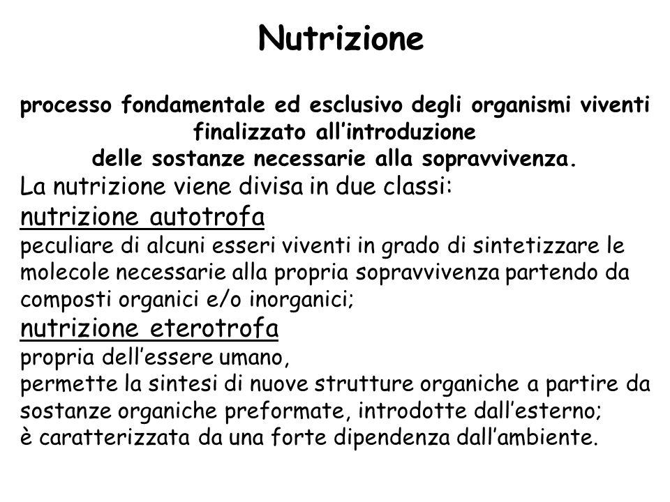 processo fondamentale ed esclusivo degli organismi viventi finalizzato allintroduzione delle sostanze necessarie alla sopravvivenza. La nutrizione vie