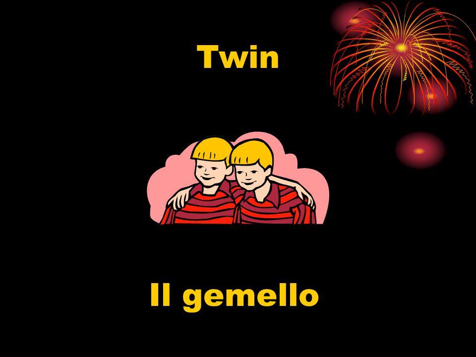 Twin Il gemello