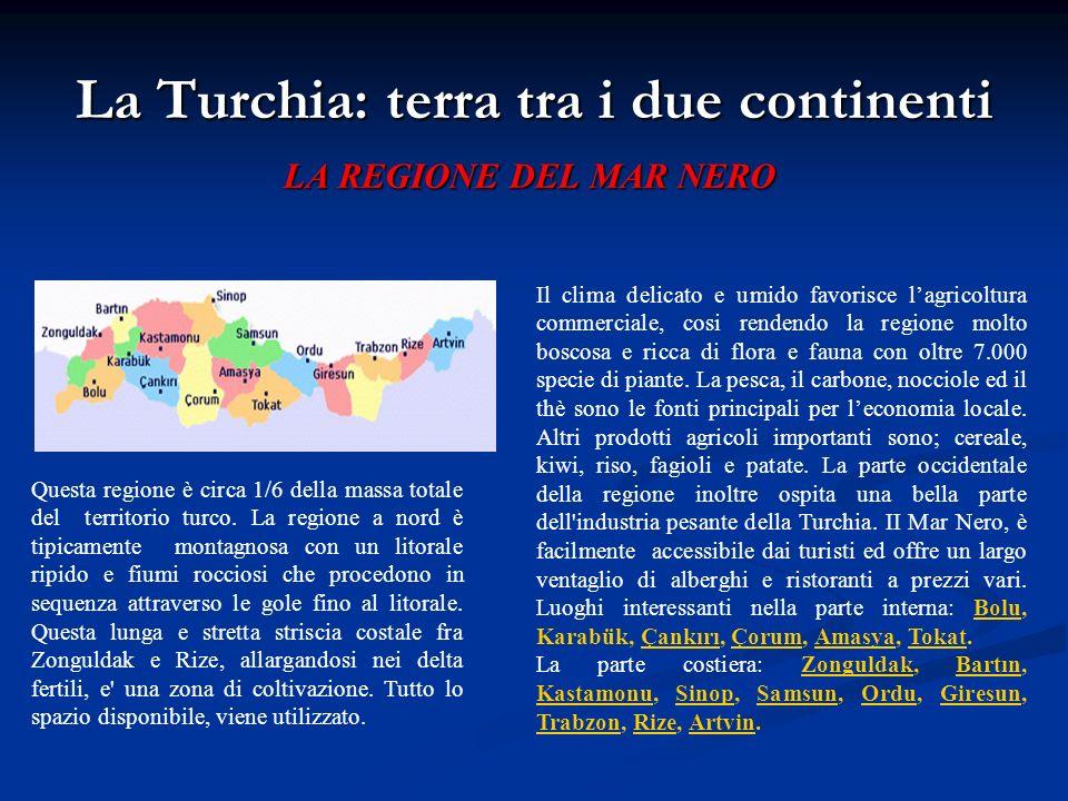 La Turchia: terra tra i due continenti LA REGIONE DEL MAR NERO Questa regione è circa 1/6 della massa totale del territorio turco. La regione a nord è