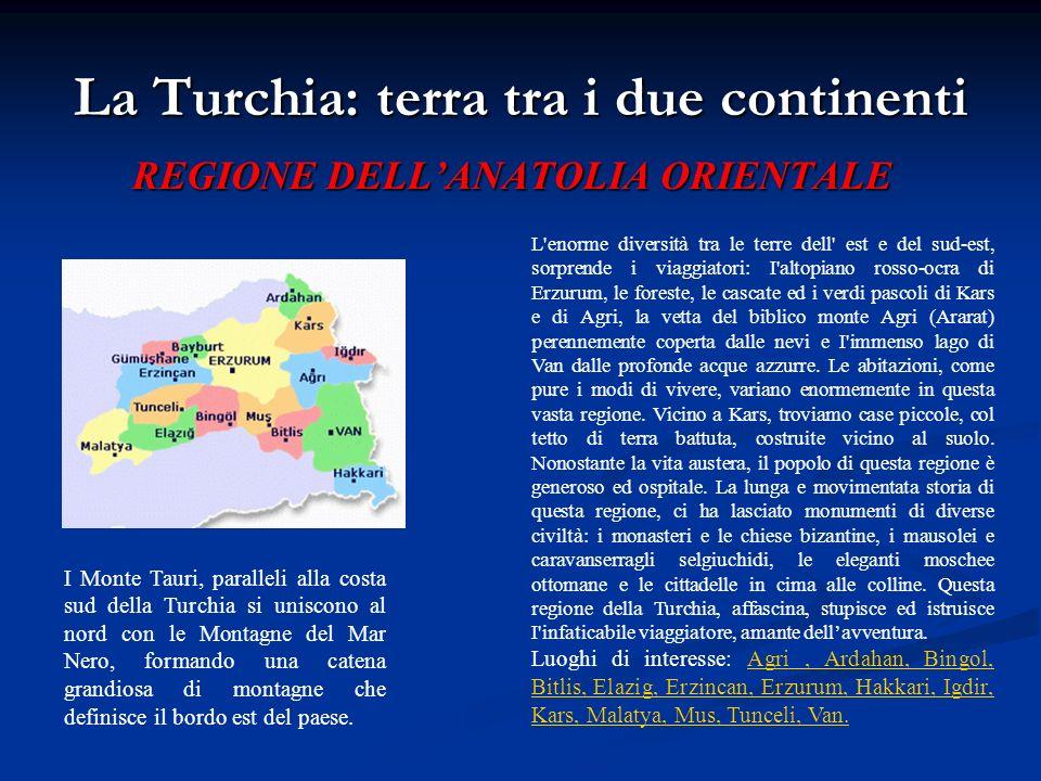 La Turchia: terra tra i due continenti REGIONE DELLANATOLIA ORIENTALE L'enorme diversità tra le terre dell' est e del sud-est, sorprende i viaggiatori