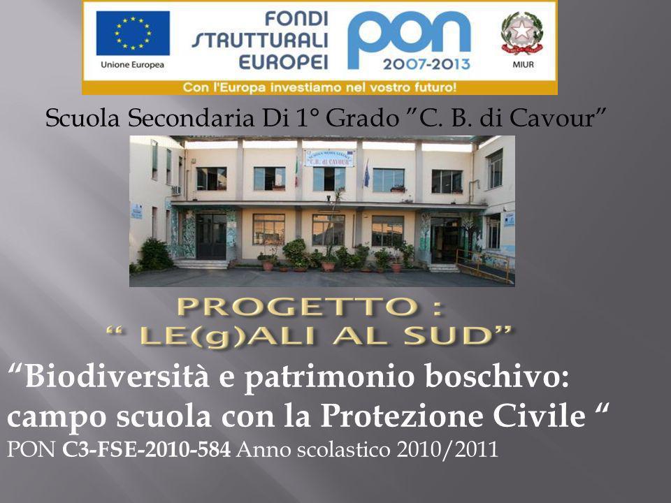 Biodiversità e patrimonio boschivo: campo scuola con la Protezione Civile PON C3-FSE-2010-584 Anno scolastico 2010/2011 Scuola Secondaria Di 1° Grado