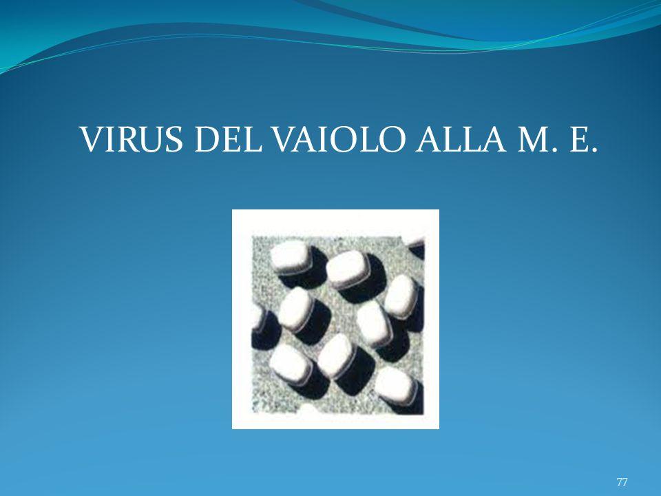 77 VIRUS DEL VAIOLO ALLA M. E.