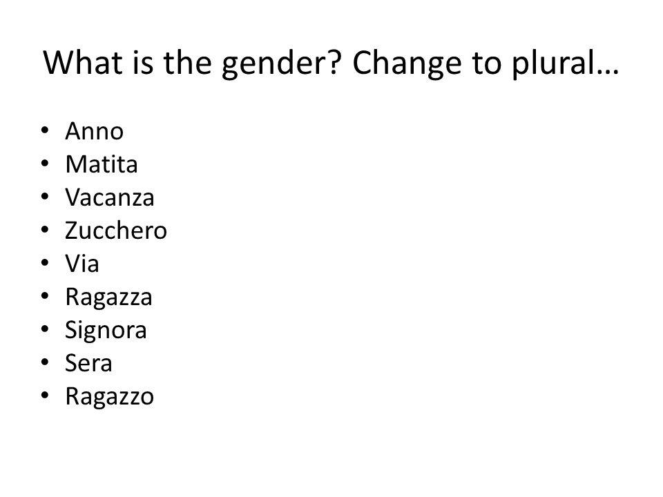 What is the gender Change to plural… Anno Matita Vacanza Zucchero Via Ragazza Signora Sera Ragazzo